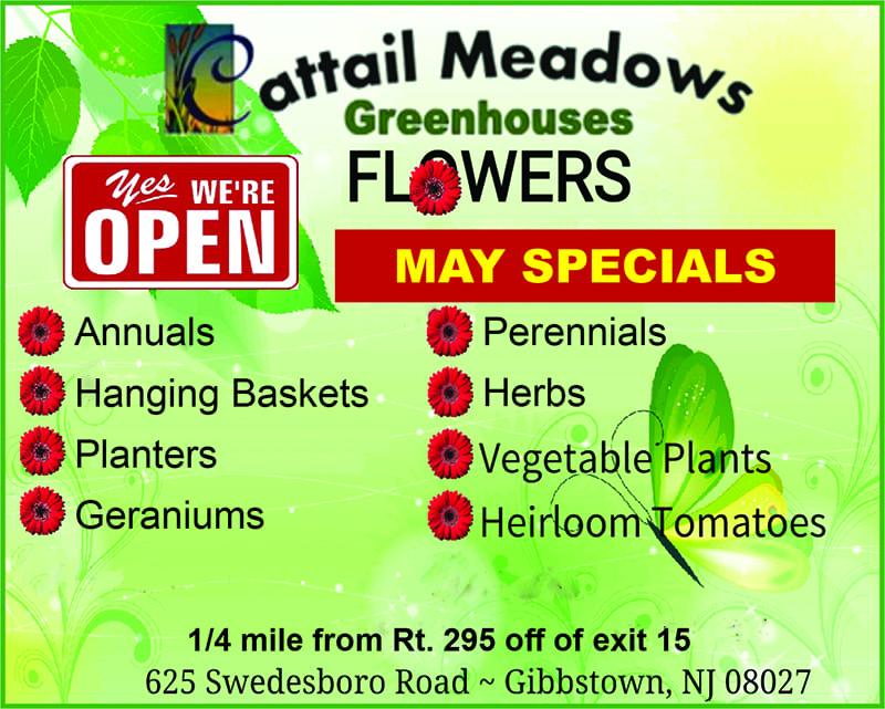 Cattail Meadows