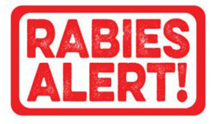 RACCOONS TEST POSITIVE FOR RABIES IN HARRISON & WEST DEPTFORD TWPS.