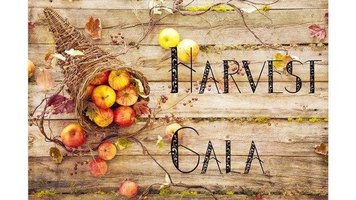 Senior Citizen Harvest Gala, Nov. 19
