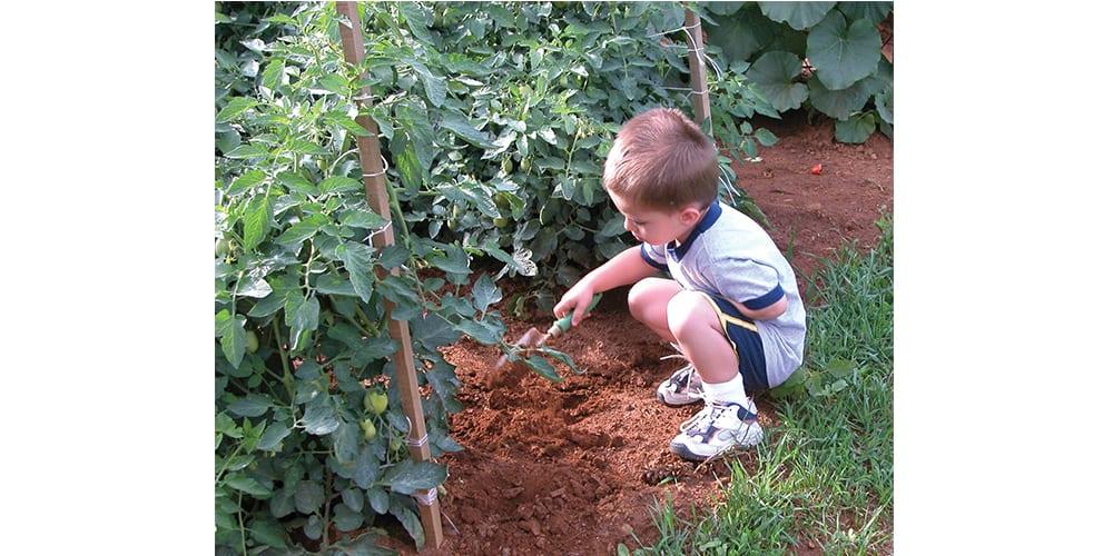 feature gardening child in garden web