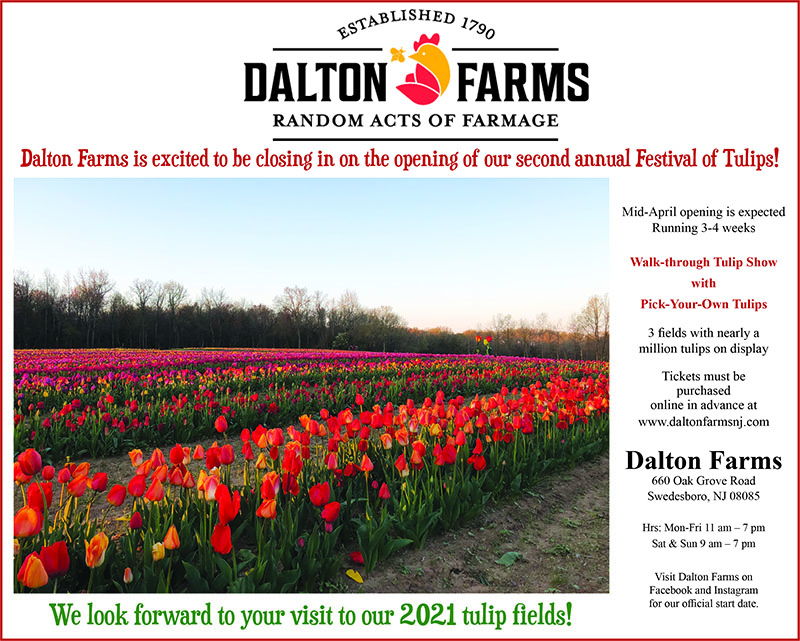 tulip festival april proof web
