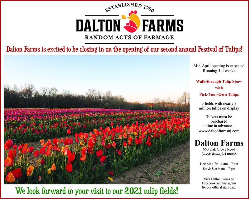 tulip festival april proof web